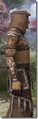 Argonian Homespun Robe - Male Close Side