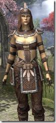 Argonian Homespun Shirt - Female Close Front