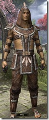 Argonian Homespun Shirt - Male Front