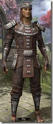 Argonian-Iron-Male-Front_thumb.jpg