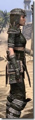 Argonian Leather - Female Close Side
