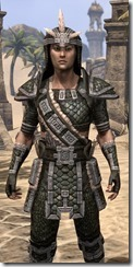 Argonian Leather - Male Close Front