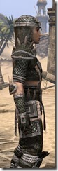 Argonian Leather - Male Close Side