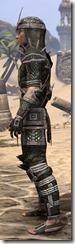 Argonian Leather - Male Side