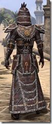 Argonian Spidersilk - Male Robe Rear