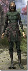 Assassins League Shirt - Female Front