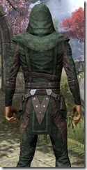 Assassins League Shirt - Male Close Back