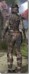 Daedric Rawhide - Female Back