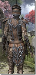 Daedric Rawhide - Female Close Back