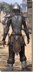 Dark Elf Steel - Female Close Rear