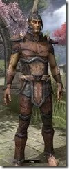 Dunmer Rawhide - Male Front