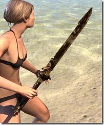 Asylum Perfected Sword 2