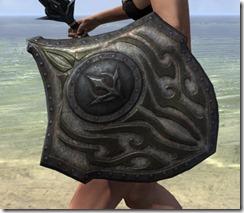 Outlaw-Beech-Shield-2_thumb.jpg