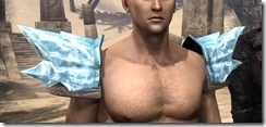 Iceheart-Pauldrons-Male-Front_thumb.jpg