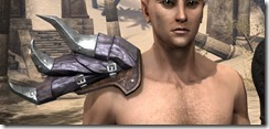 Malubeth-the-Scourger-Pauldrons-Male-Front_thumb.jpg