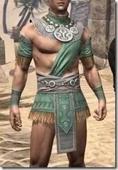 Elder-Argonian-Homespun-Jerkin-Male-Front_thumb.jpg