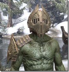 Engine-Guardian-Argonian-Male-Front_thumb.jpg