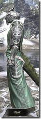 Apostle Homespun - Argonian Male Robe Side