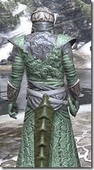 Ashlander Homespun - Argonian Male Robe Close Rear