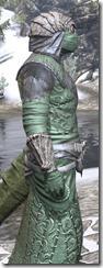 Ashlander Homespun - Argonian Male Robe Close Side