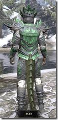 Buoyant Armiger Iron - Argonian Male Rear
