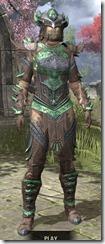 Buoyant Armiger Rawhide - Khajiit Female Front