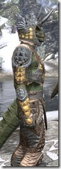 Dead-Water Rawhide - Argonian Male Close Side