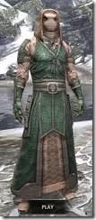 Akaviri Homespun - Argonian Male Robe Front