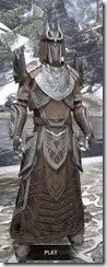 Aldmeri Dominion Homespun - Argonian Male Robe Front