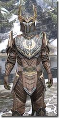 Aldmeri Dominion Rawhide - Argonian Male Close Front