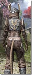 Aldmeri Dominion Rawhide - Khajiit Female Close Rear