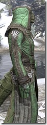 Ancient Elf Homespun - Argonian Male Robe Close Side