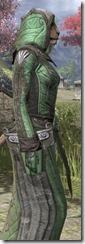 Ancient Elf Homespun - Khajiit Female Robe Close Side
