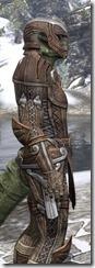 Ancient Elf Rawhide - Argonian Male Close Side