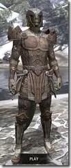 Ancient-Elf-Rawhide-Argonian-Male-Front_thumb.jpg