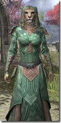 Ancient Orc Homespun - Khajiit Female Robe Close Front