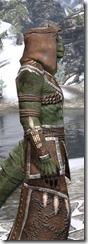 Argonian Homespun - Argonian Male Robe Close Side