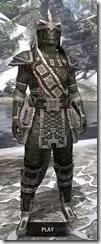 Argonian-Leather-Argonian-Male-Front_thumb.jpg
