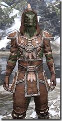 Argonian Linen - Argonian Male Shirt Close Front