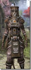 Argonian Orichalc - Khajiit Female Close Front
