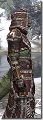 Argonian Spidersilk - Argonian Male Robe Close Side