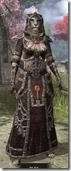 Argonian Spidersilk - Khajiit Female Robe Front