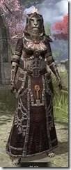 Argonian-Spidersilk-Khajiit-Female-Robe-Front_thumb.jpg