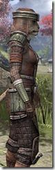 Argonian Steel - Khajiit Female Close Side