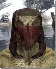 Ashlander-Medium-Helmet-Argonian-Male-Front_thumb.jpg