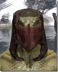 Ashlander-Medium-Helmet-Argonian-Male-Front_thumb.jpg