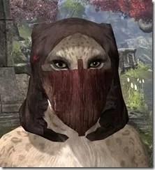 Ashlander-Medium-Helmet-Khajiit-Female-Front_thumb.jpg