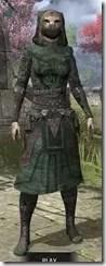 Assassins League Homespun - Khajiit Female Robe Front