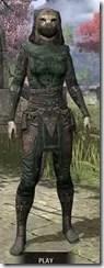 Assassins-League-Homespun-Khajiit-Female-Shirt-Front_thumb.jpg