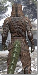 Assassins League Rawhide - Argonian Male Close Rear